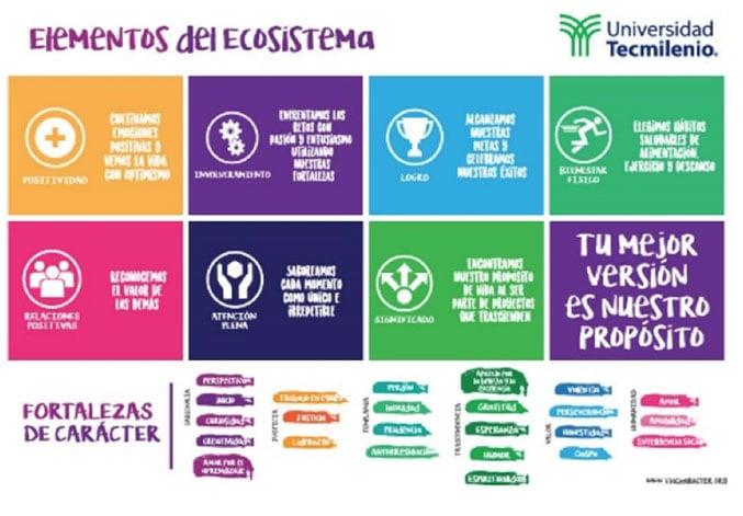 elementos-ecosistema